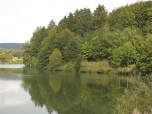 Driburg