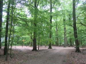 Segeberger Heide
