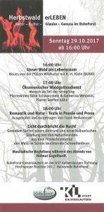 Herbstwald Flyer